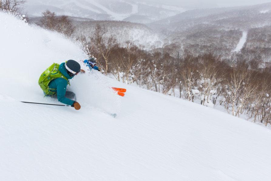 Powder Guiding Skiing Lr 6