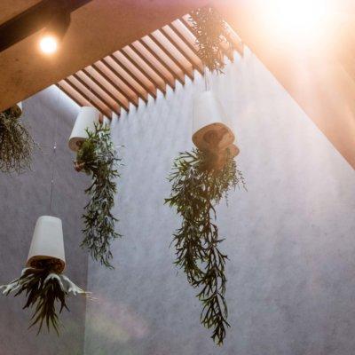 Cafe Deli Summer 2019 Interior Lr 434