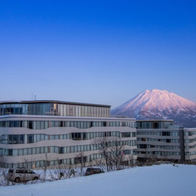 Unmatched Mt Yotei views