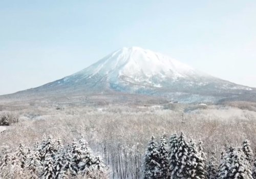 Yotei Winter
