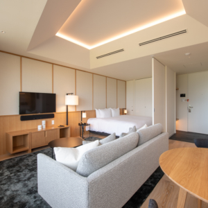Skye Niseko Studio Interior Living Room Apt659 Low Res 3